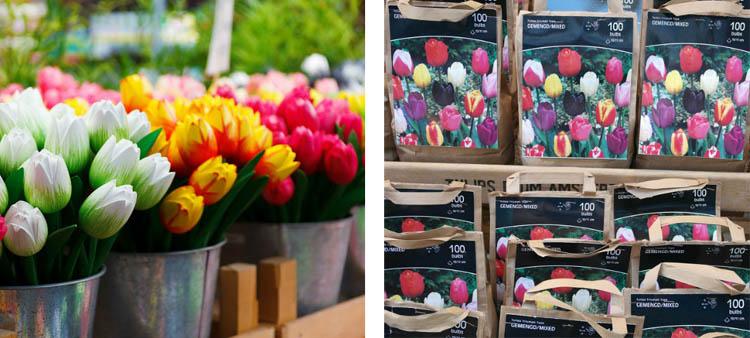 mercado-de-las-flores